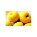 Dzeltanais persiks