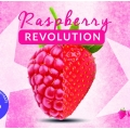 MolinBery Raspberry Revolution 15ml